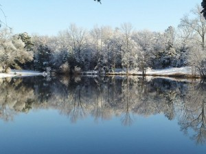 Beautiful pond in the snow