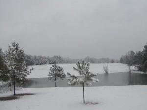 Snow at Upper Pond