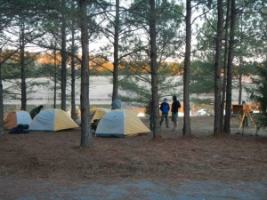 Scout's Camping at Shady Pines