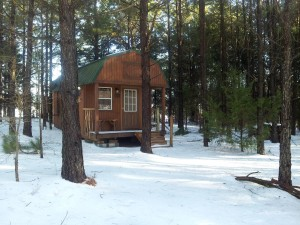 Shady Pines Cabin