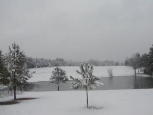 Snow at Upper Pond